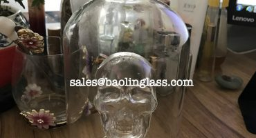750ml vodka glass bottle skull head